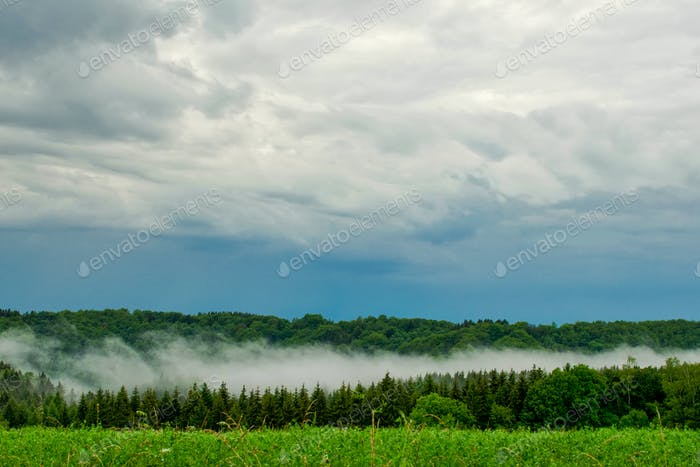 Beautiful storm clouds over forrest
