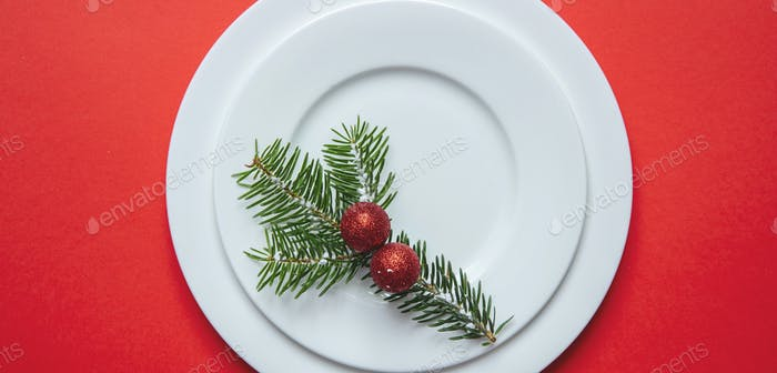 Fir tree twig on white set of dishes isolated, red background