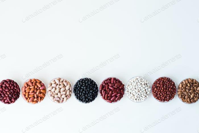 Verschiedene Samen Bohnen in runden Platten sind in einer Reihe angeordnet.