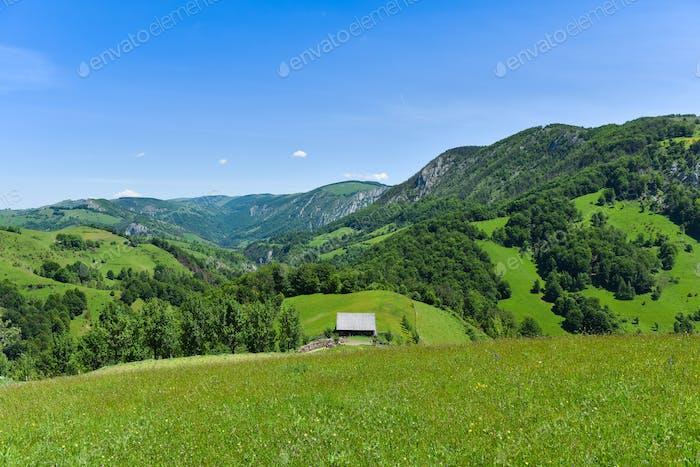 Vibrant green countryside landscape. Transylvania, Romania
