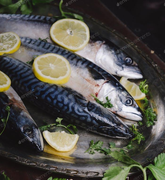 Mackerels on silver plate