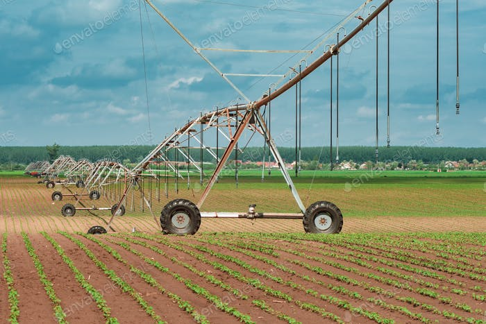 Pivot irrigation system in cultivated soybean and corn field