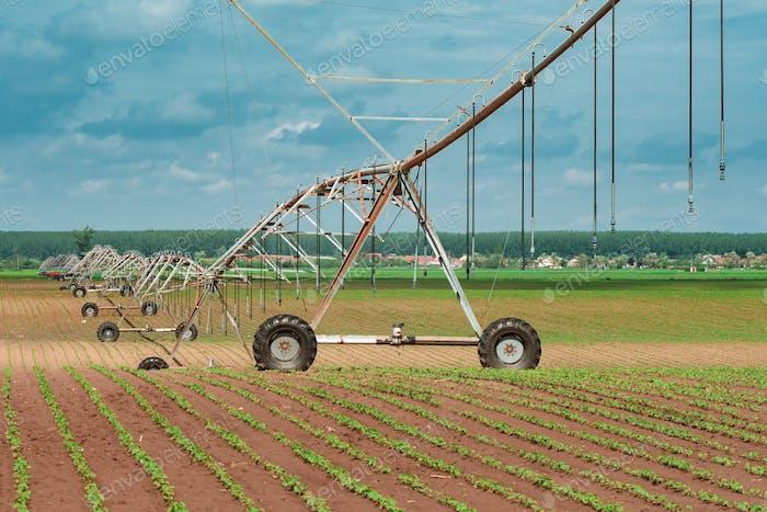 Pivot Bewässerungssystem im Anbau von Sojabohnen und Mais Feld
