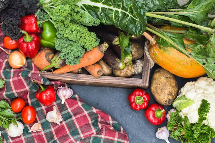 Assortment of fresh vegetables. Healthy organic food concept