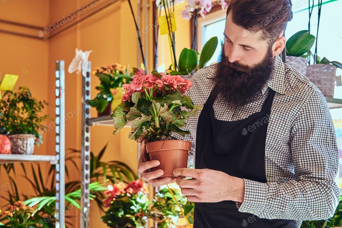 Florería masculina profesional en la floristería