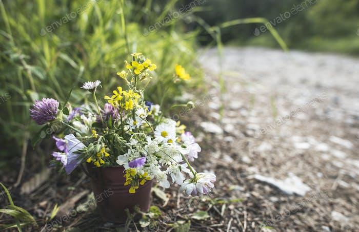 Ведро с полевыми цветами