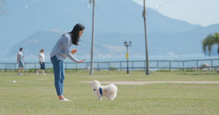 Woman training with her dog with snack at outdoor park