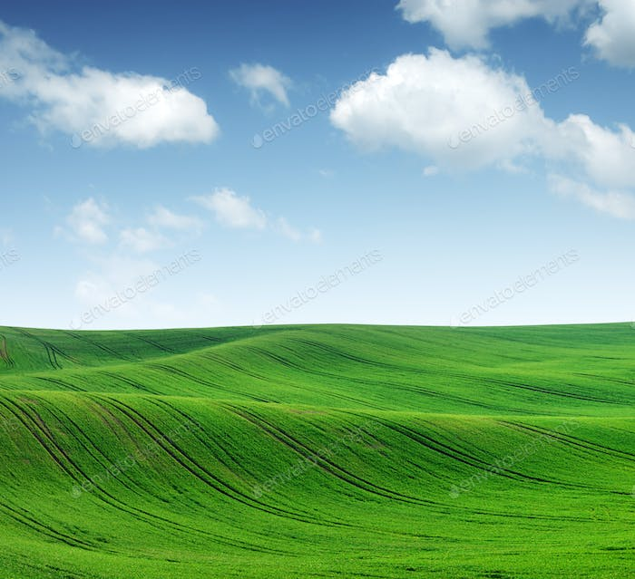 Abstract rural landscape with agricultural fields