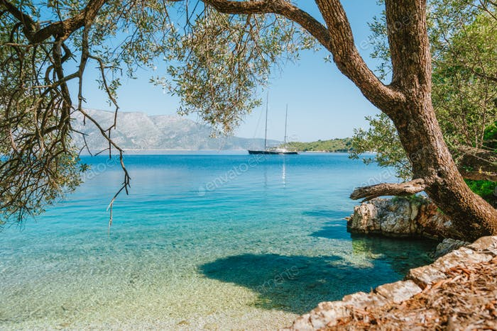 Summer vacation in Greece. Sea bay view framed with old olive tree and luxury yacht in lagoon in a