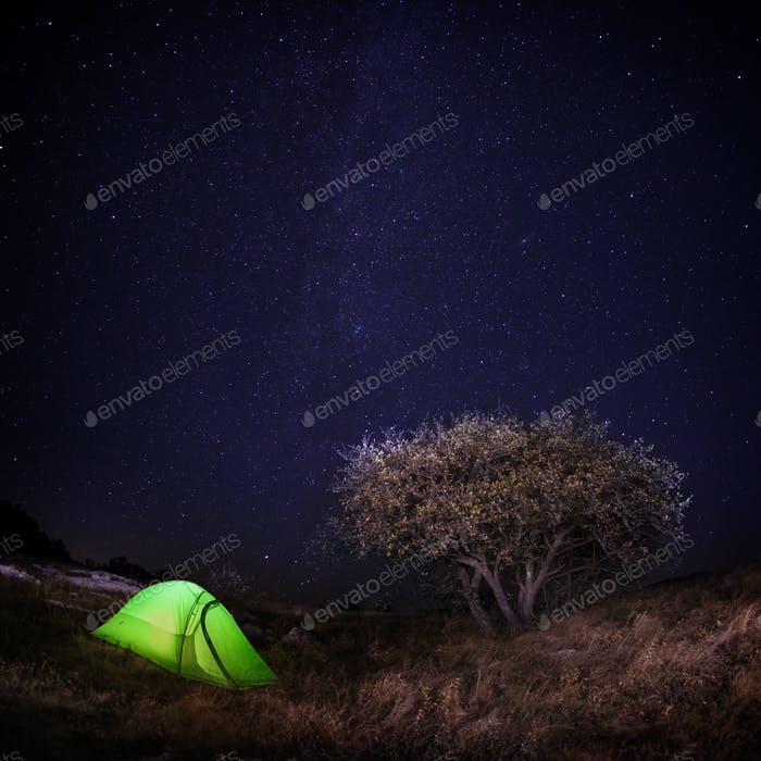 Tourist tent under a tree on the background of night sky