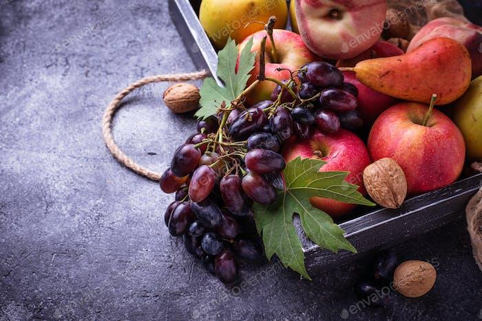 Fresh fruits. Apples, pears, grape and peaches