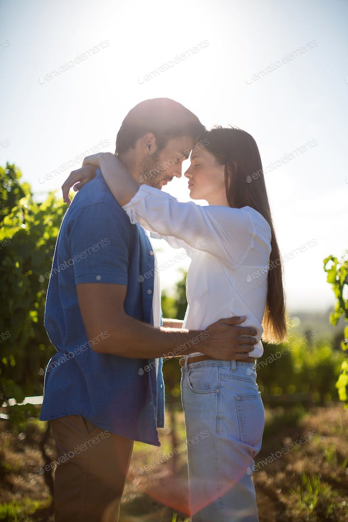 Young couple standing face to face at vineyard against sky