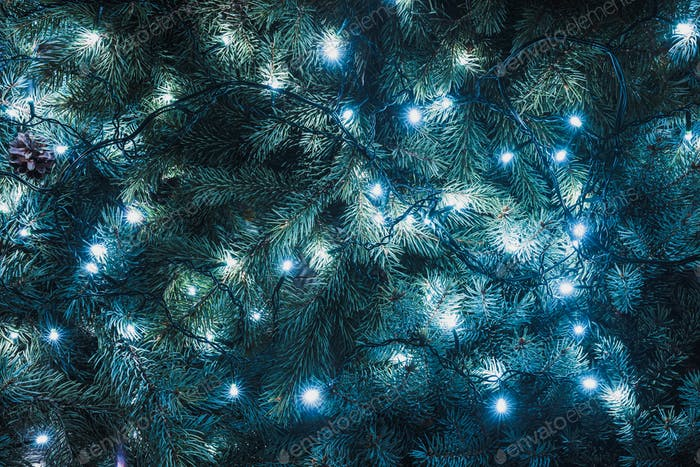 beautiful fir twigs with illuminated garland, christmas background