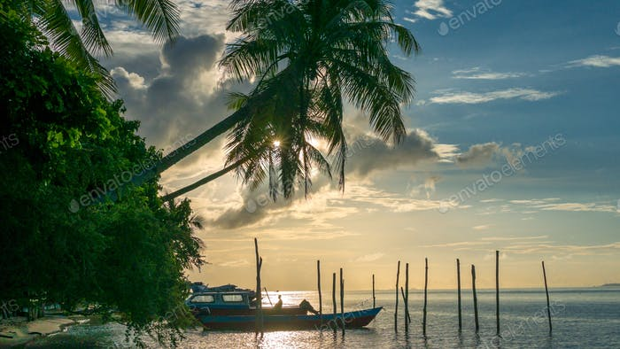 Evening on Kri Island. Boats under Palmtrees. Raja Ampat, Indonesia, West Papua