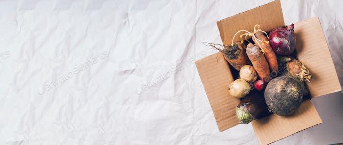Spendenbox mit nicht gentechnisch verändertem Gemüse auf Bastelpapier Hintergrund. Konzept der Zero-Abfall-Produktion
