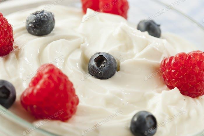 Fresh Organic Healthy Yogurt