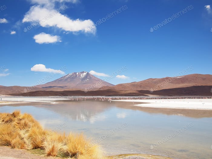 Volcano landscape on the Altiplano in Bolivia