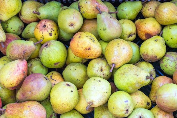Haufen von reifen grünen Birnen