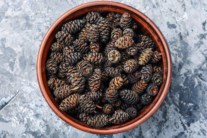 Healing alder cones