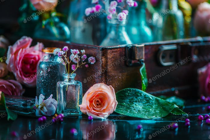 Flower collection in vintage glass bottles close-up. Botany and perfume header on a dark background