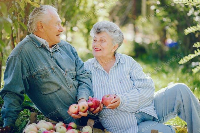 Altes Paar sittingin einem Sommergarten mit Ernte