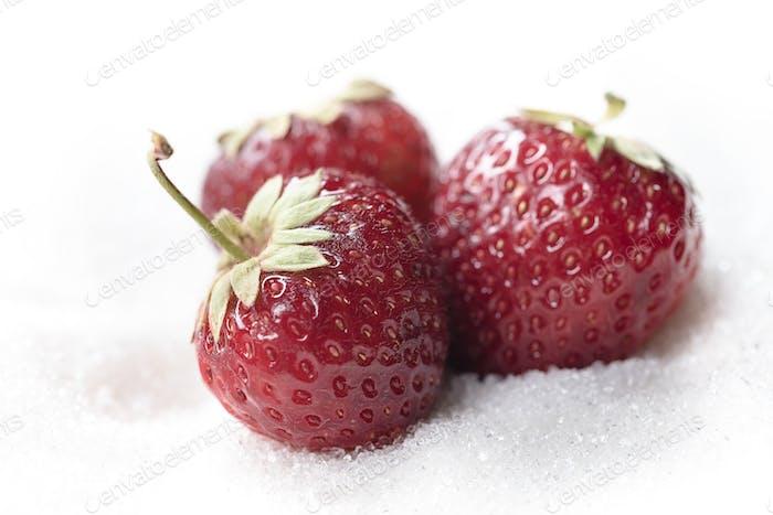 Süße Erdbeere isoliert über weißem Zucker Hintergrund.
