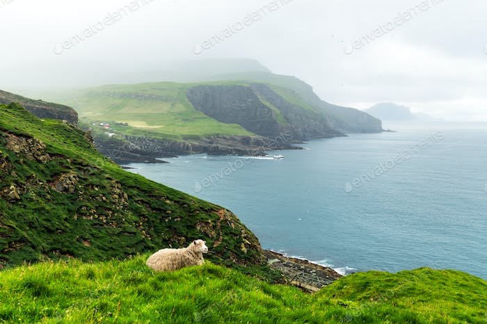 Summer view of Mykines island