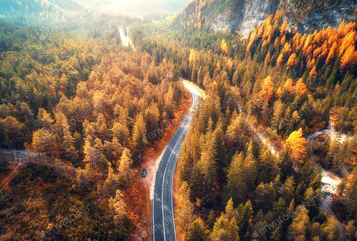 Aerial view of the road in beautiful autumn forest at sunset