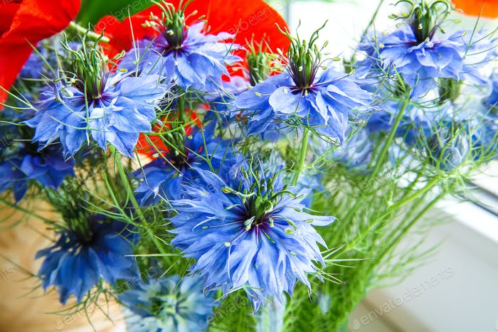 Cornflower in the bouquet.