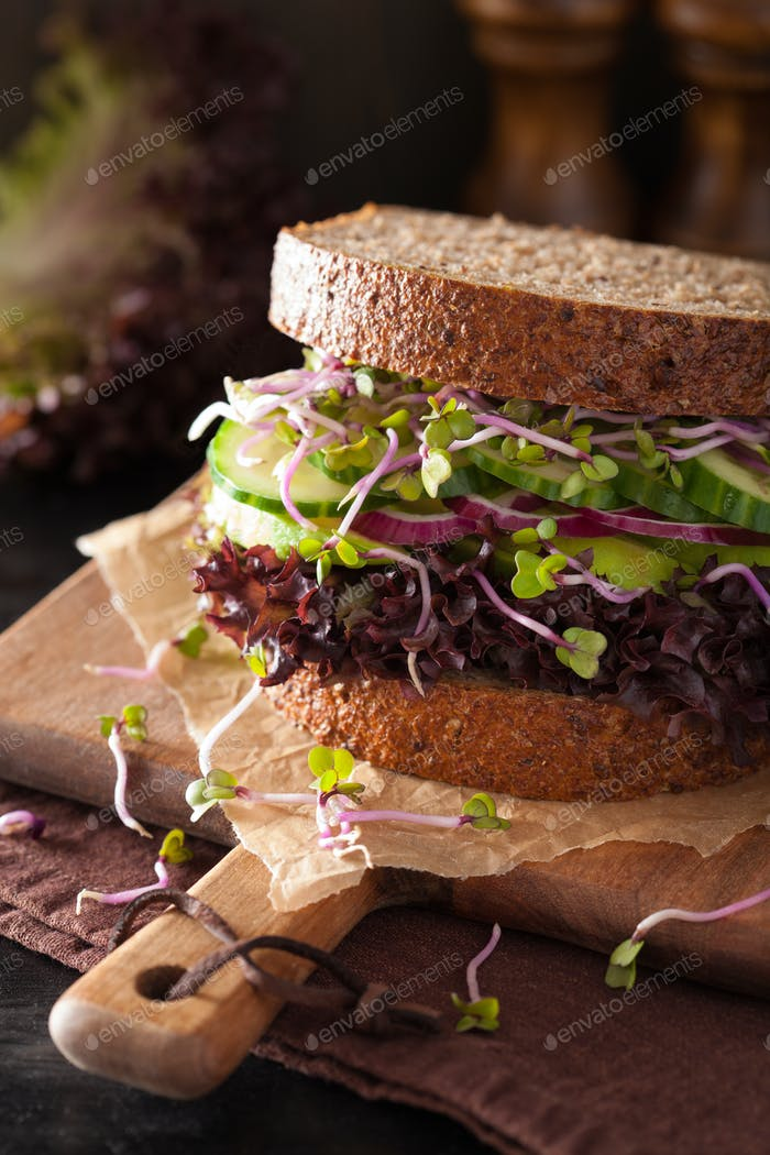 avocado cucumber sandwich with onion and radish sprouts