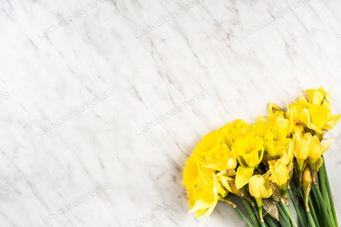 Garden fresh daffodils on marble table