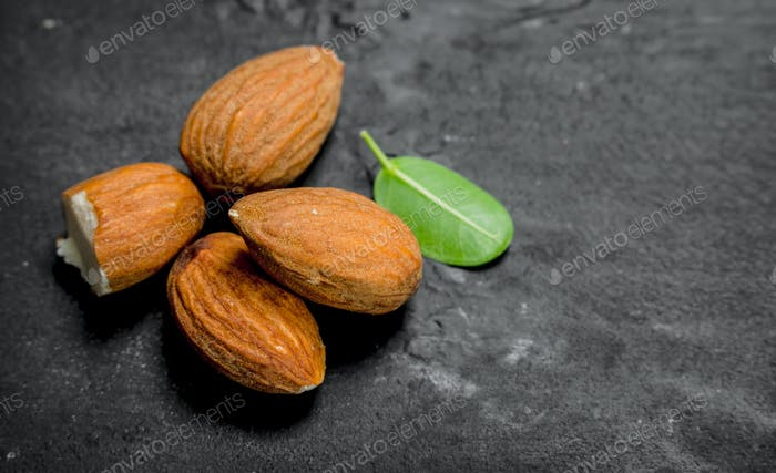 Almonds with green leaves.