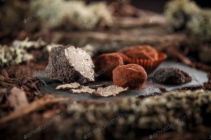 Feine Schokoladen-Pralinen