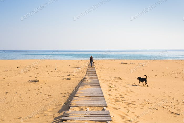 man with dog walking on the tropical beach