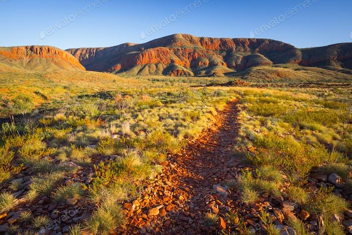 Aussie Trek