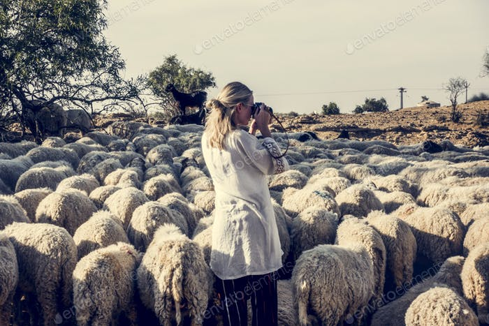 Blonde woman among a flock of sheep