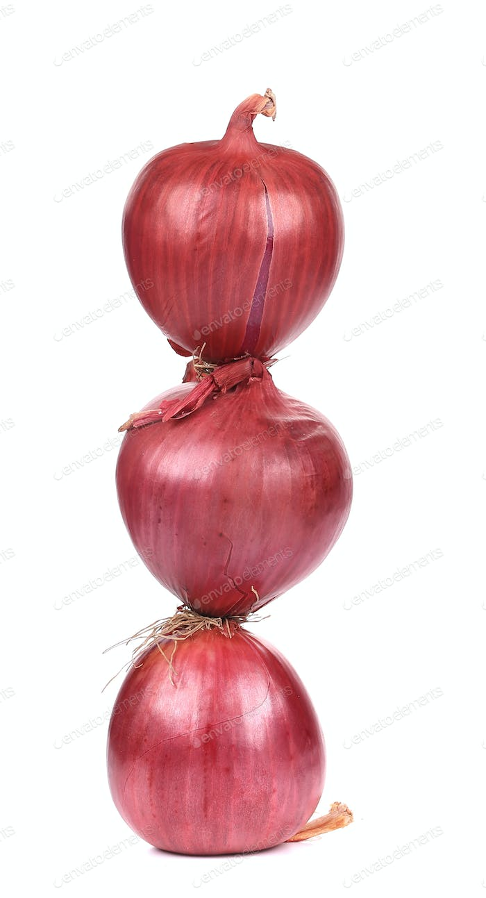 close up of red onions