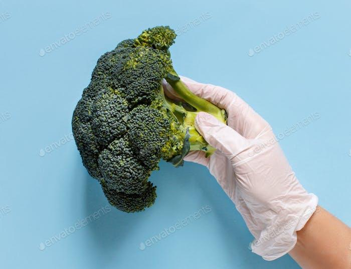 Hand in Handschuh hält Brokkoli über hellblauem Hintergrund