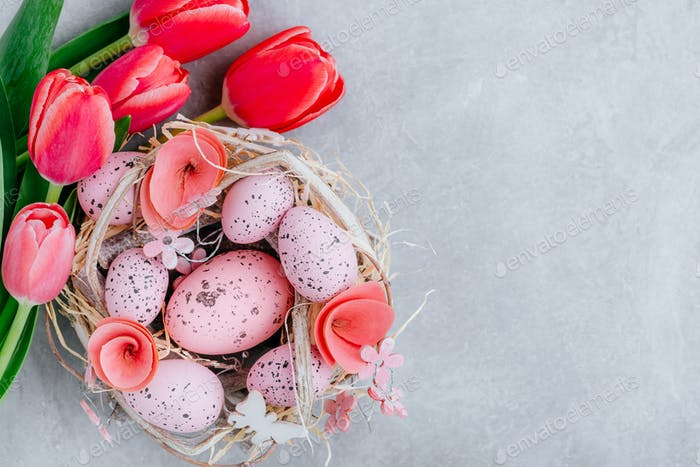 Colorful Easter egg in the nest with tulip flowers on gray stone concrete background