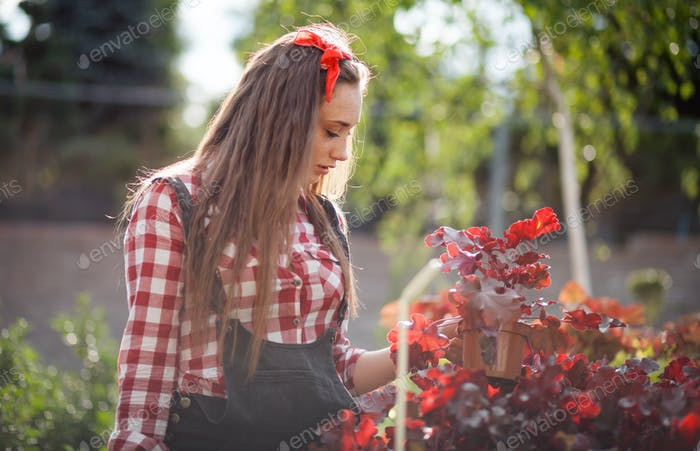 Young gardener woman choosing and buying potted plants in garden center