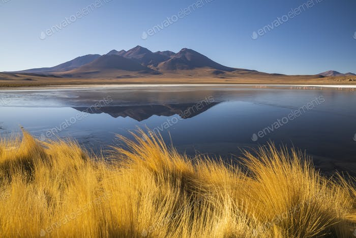 Sunrise view of Laguna de Canapa with flamingo, Bolivia, Altiplano