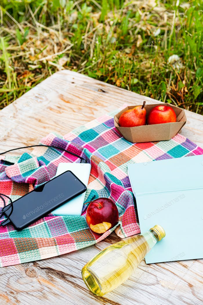 Picnic in Nature, at Sunny Day.