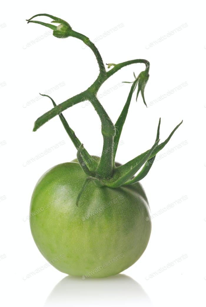 grüne Tomate isoliert auf weiß