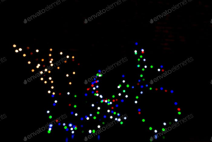 Bicycle of lights with pine tree on black background