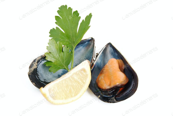 mussel lemon and parsley
