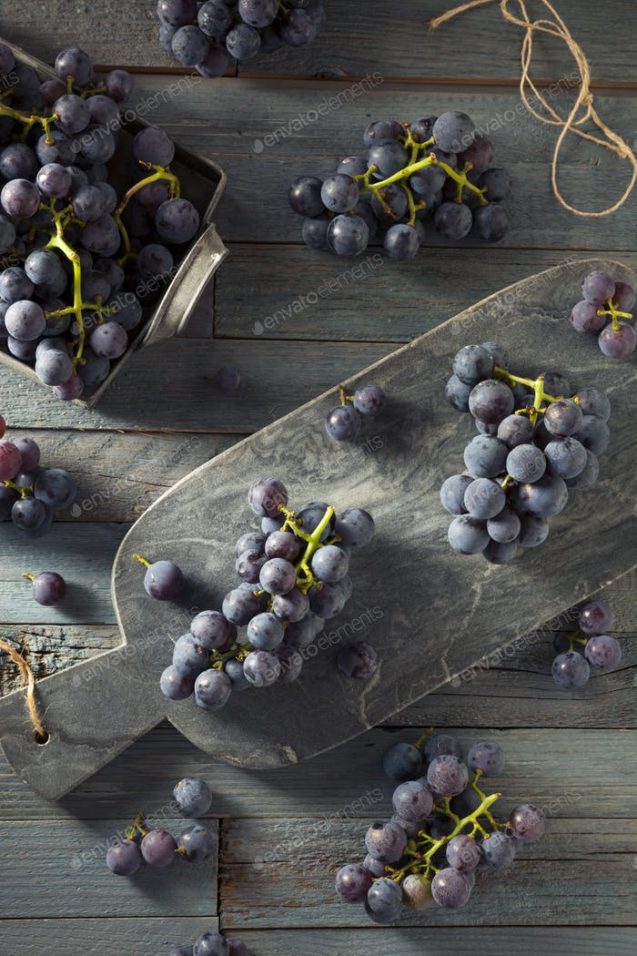 Raw Organic Purple Concord Grapes