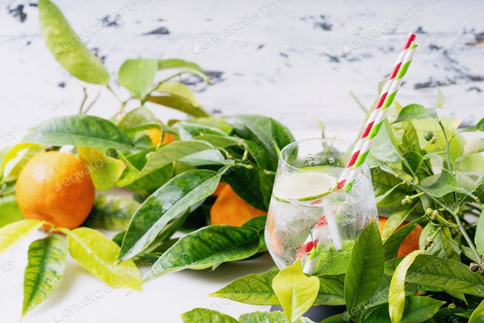 Homemade citrus infused water