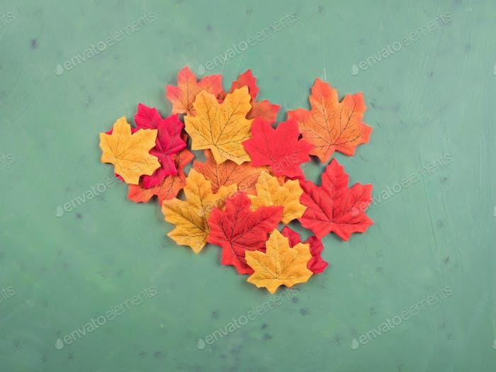 Multi color maple leaves on dark green