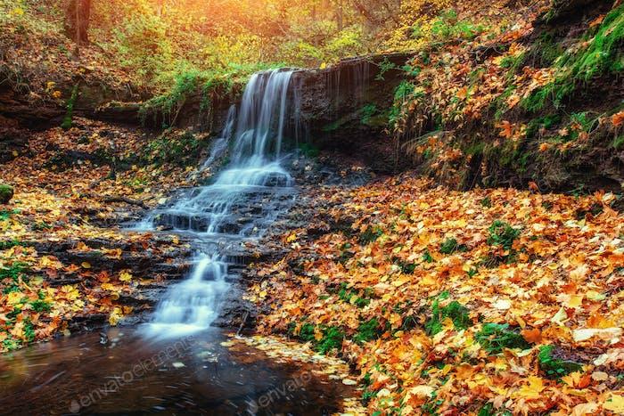 Waterfall in autumn sunlight