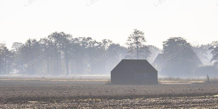 Misty November Landschaft Landschaft